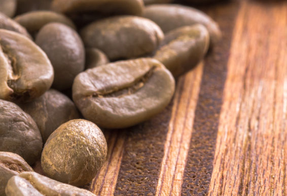 Spilling the Beans on Green Coffee Extract